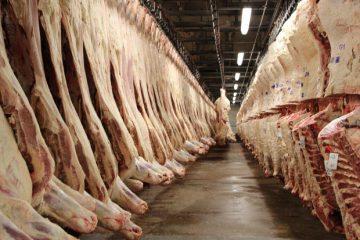 یک میلیون تن گوشت آمریکایی با جنگ تجاری بدون مقصد ماند