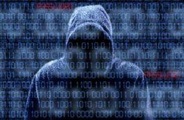 یک هکر اطلاعات نیم میلیون آمریکایی را دزدید