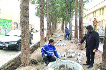 اجرای عملیات ساماندهی و بهسازی بلوار کارگر شهر فلاورجان