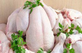 نرخ مصوب مرغ کشتار روز ۱۱ هزار و ۹۰۰ تومان/ عرضه مرغ کشتار روز ۱۰ هزار تومانی در هفته جاری