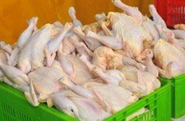 کشف ۲ تن گوشت مرغ فاسد در فاروج