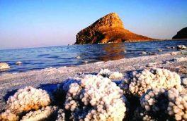 جمعیت گونه آرتمیا با احداث میانگذر در دریاچه ارومیه تغییر نکرده است