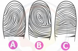 شخصیت خودتان از روی انگشتان دستتان بشناسید! +تست روانشناسی