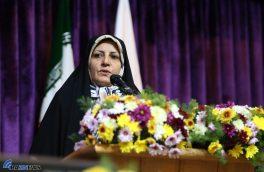 اخوان نسب: نقش زنان توانمند در توسعه اقتصادی جامعه بی بدیل است