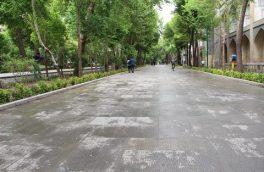 توسعه پیادهمداری