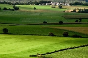 تغییر کاربری اراضی کشاورزی قانونشکنی بارز است