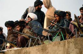سفارش به درختکاری؛ تلاش برای تغییر رویکرد نظامی طالبان
