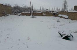 ارتفاع برف در گلپایگان به ۱۰ سانتی متر رسید