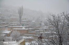 بارش نخستین برف زمستانی در شهرضا/استفاده از بخاری برقی در باغات