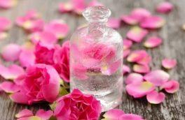 صادرات گلاب برزک کاشان سالیانه بیش از یک میلیون دلار ارزآوری دارد