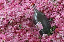 برگزاری جشنواره گل و گلاب در امامزاده بی بی زینب (س)