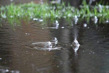 بارش ها در شهرضا ۲.۶ برابر شد