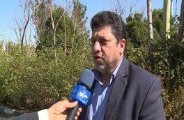 اجرای طرح مفتاح الجنه در کاشان/توزیع کیسههای همیان مولا
