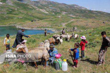 ۱۲۰۰ خانوار عشایر از اواخر اردیبهشتماه وارد چادگان میشوند