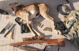 دستگیری شکارچی غیرمجاز به همراه دو لاشه میش آبستن در نطنز