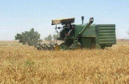 آغاز برداشت گندم در استان یزد