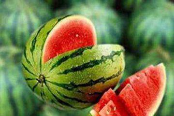 جاسازی محموله نوشیدنی قاچاق زیر بار هندوانه!