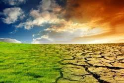 باد و باران همراه با افزایش دما در دشت کاشان