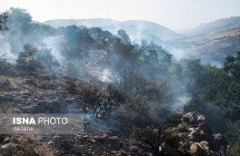 حدود ۴۵ هکتار از مراتع نطنز در آتش سوخته است