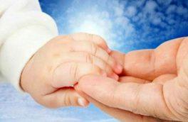 خیریه عترت بوتراب از ۱۱ هزار یتیم در شش استان کشور حمایت میکند