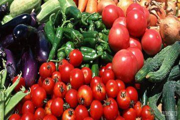 سالانه ۲۷۸ هزار تن سبزی و صیفی در اصفهان تولید میشود