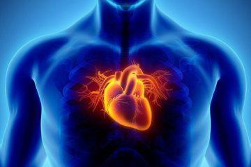 خطرناکترین زمانهای سال برای سلامت قلب