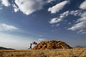 برکت پاسداشتنی زمین/ ۲۹۲ هزار تن گندم خریداری شد