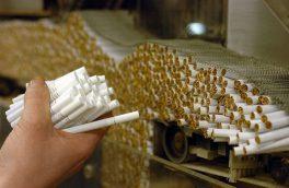 تولید سیگار همچنان صعودی