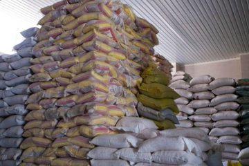 برنجهای متوقف در گمرک ترخیص میشوند