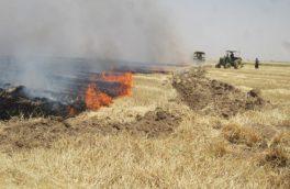 کشاورزان از آتش زدن باقی مانده محصولات زراعی جدا خودداری کنند