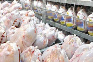 قیمت انواع محصولات پروتئینی در بازار/ قیمت مرغ کاهش یافت