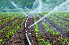 ۲میلیون و ۱۰۰ هزار هکتار از زمینهای کشاورزی به سیستمهای نوین آبیاری مجهزشدند