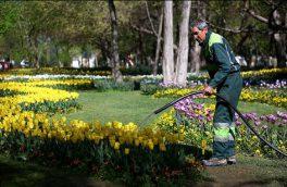 توسعه تکنولوژی و سیستم مکانیزه آبیاری درختان و فضای سبز منطقه ۱۲