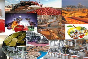 ظرفیتهای فناوری نانو در حوزه صنایع غذایی و کشاورزی معرفی میشود