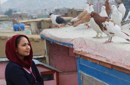 نماینده اسکار ۲۰۲۰ افغانستان آذرماه به ایران میآید