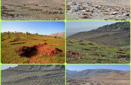 غنی سازی ۱۲ هزار هکتار جنگل در لرستان
