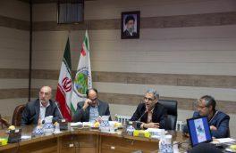 ۶۲۰ هکتار از اراضی استان یزد نهالکاری خواهد شد