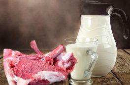 تولید شیر و گوشت در استان افزایش یافته است
