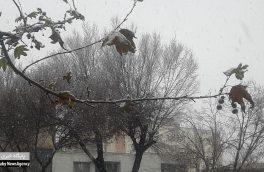اصفهان سفید پوش شد