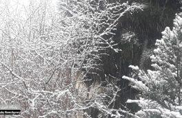 اولین برف زمستانه اصفهان رسید