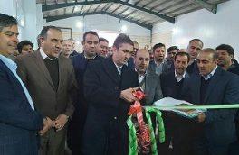 اولین کارخانه تولید آرد کامل استان مرکزی در شهرستان آشتیان آغاز به کار کرد