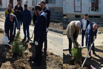 شهردار ملارد با حضور در پارک دانش به مناسبت روز درختکاری چند نهال غرس کرد