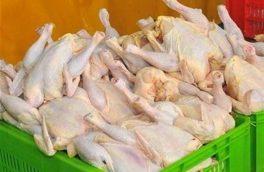 قیمت مرغ در فروشگاههای مجازی و حضوری متفاوت شد