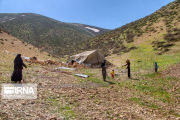 دسترسی ۷۵ هزار خانوار عشایری به پنل خورشیدی تا پایان برنامه ششم