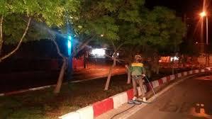 آغاز عملیات سمپاشی شبانه برای کنترل آفات درختان