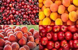 آخرین وضعیت قیمت میوه های تابستانه/ قیمت نوبرانهها کاهش یافت
