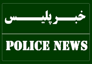 هشت سارق در چهارمحال و بختیاری دستگیر شد