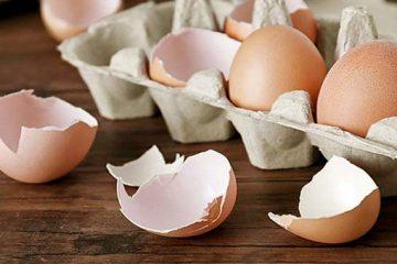 خواص عجیب پوست تخممرغ که باورتان نمیشود