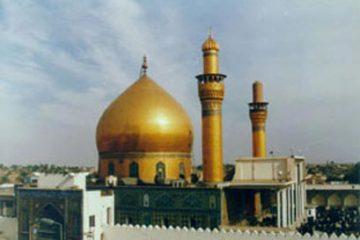 مبارزات سیاسی امام هادی(ع)
