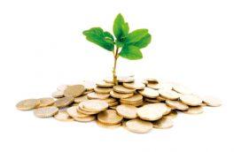 سرمایه گذاری بخش خصوصی، افزایش درآمد پایدار شهرداری ها